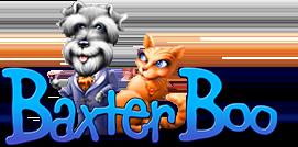 BaxterBoo coupon codes