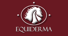 Equiderma coupon codes